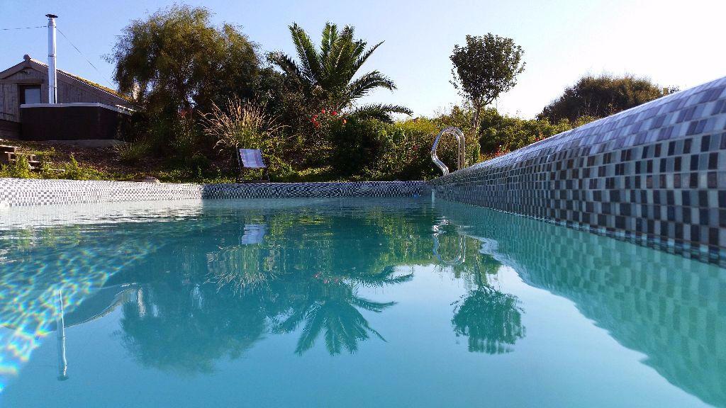 Am nager votre ext rieur cr apaysage for Piscine et paysage